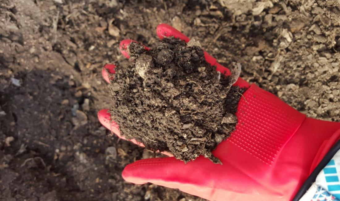 生物干化污泥的资源化利用-1.png